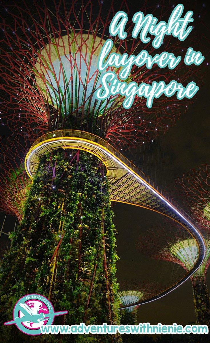 NIght Layover in Singapore